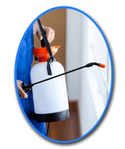 Pest Control Kyneton